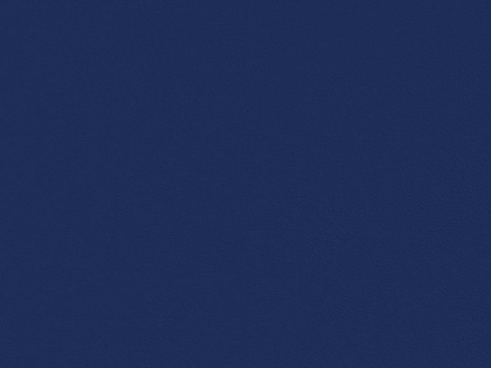 Tone Blauwe verf (2L)