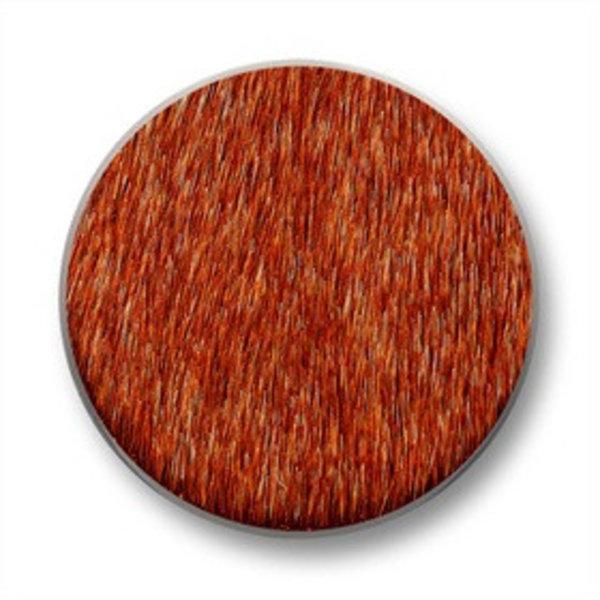 Mi Moneda Mi-Moneda coin Mimoso Orange medium
