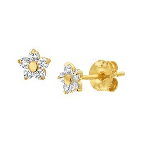 Gouden oorknoppen 40.18269