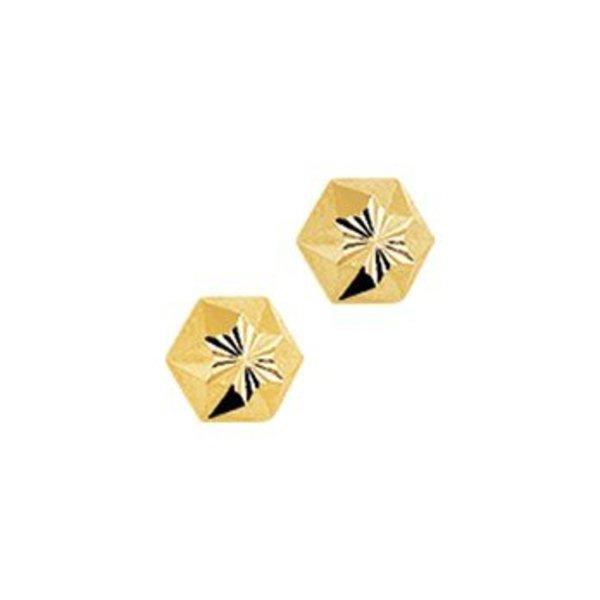 Gouden oorknoppen 40.18259