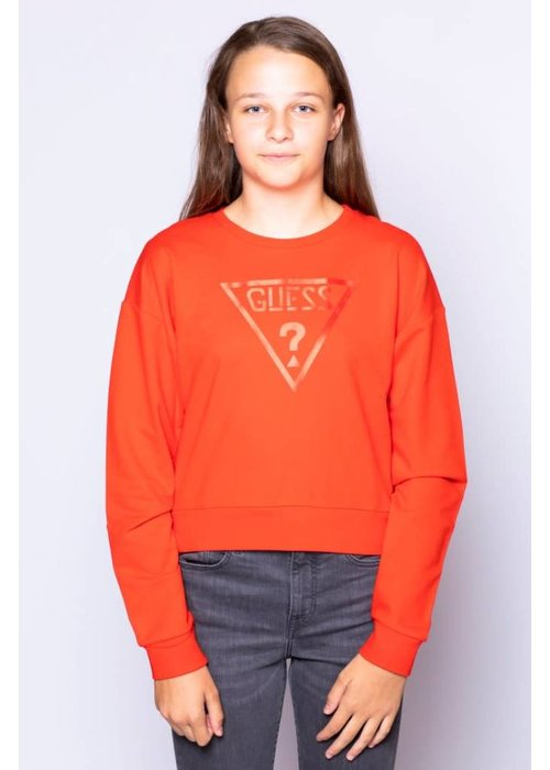 GUESS GUESS KIDS SWEATERSHIRT MINI ME