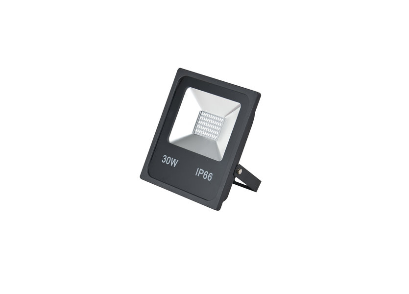 LED Bouwlamp 30 Watt Blauw Licht IP65 - Crius