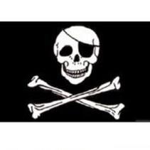 Traditionele Piratenvlag met schedel en gekruiste botten