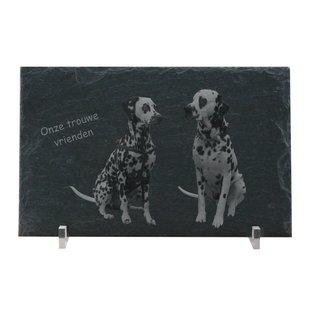 Leisteen met plexiglashouders, 40x25x0,6cm