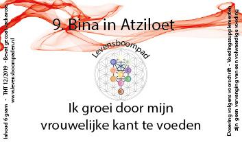 09 Bina in Atziloet