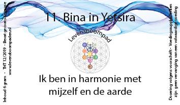 11 Bina inYetsira