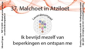37 Malchoet in Atziloet