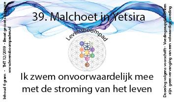 39 Malchoet in Yetsira