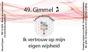 49 Gimmel