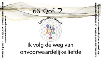 66 Qof