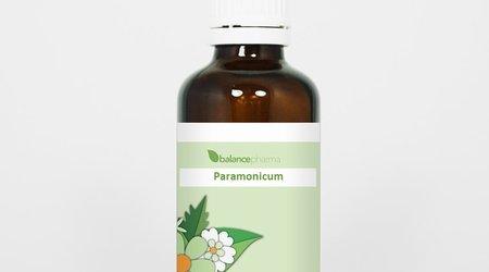 Paramonicum