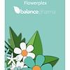 Werkboek Flowerplex