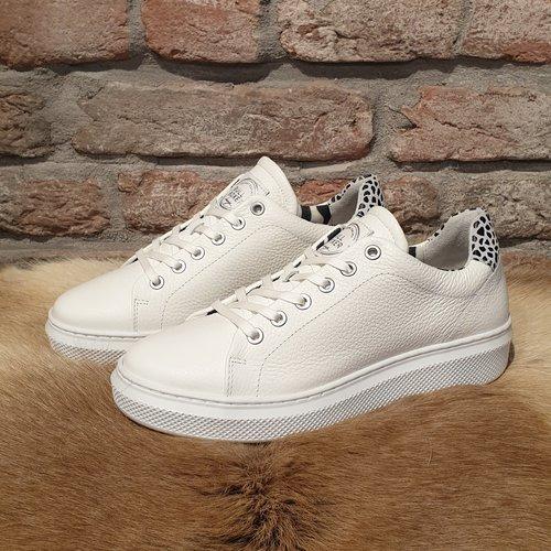 BullBoxer Bullboxer sneaker white animal print 807020E5L