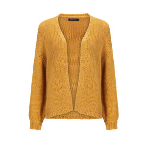 Ydence Ydence cardigan met lurex Riley yellow