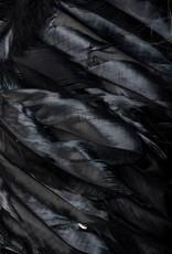 Verleidelijke zwarte  engel set met vleugels