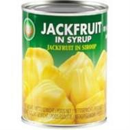 XO Jackfruit op siroop 565g