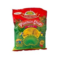 Tropical Gourmet Bananenchips gekruid 85g
