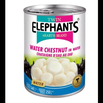 Twin Elephant Waterkastanje 540g