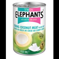 Twin Elephant Jonge kokosvlees op siroop 425g