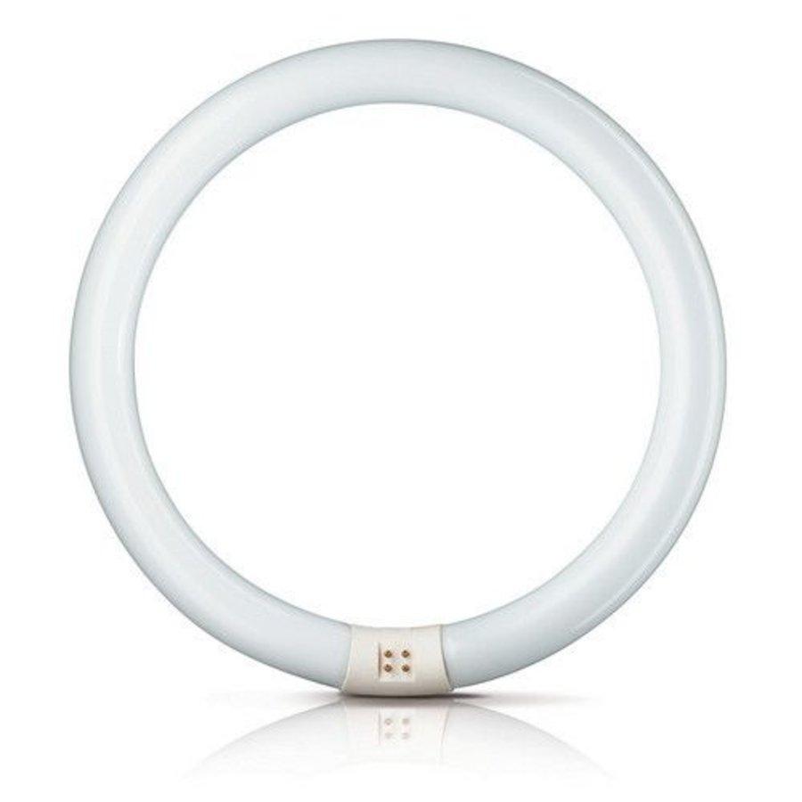 MASTER TL-E Circular Super 80 32W 830-1