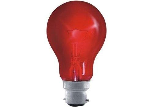 Eveready 60W B22D Haardvuurlamp 240V