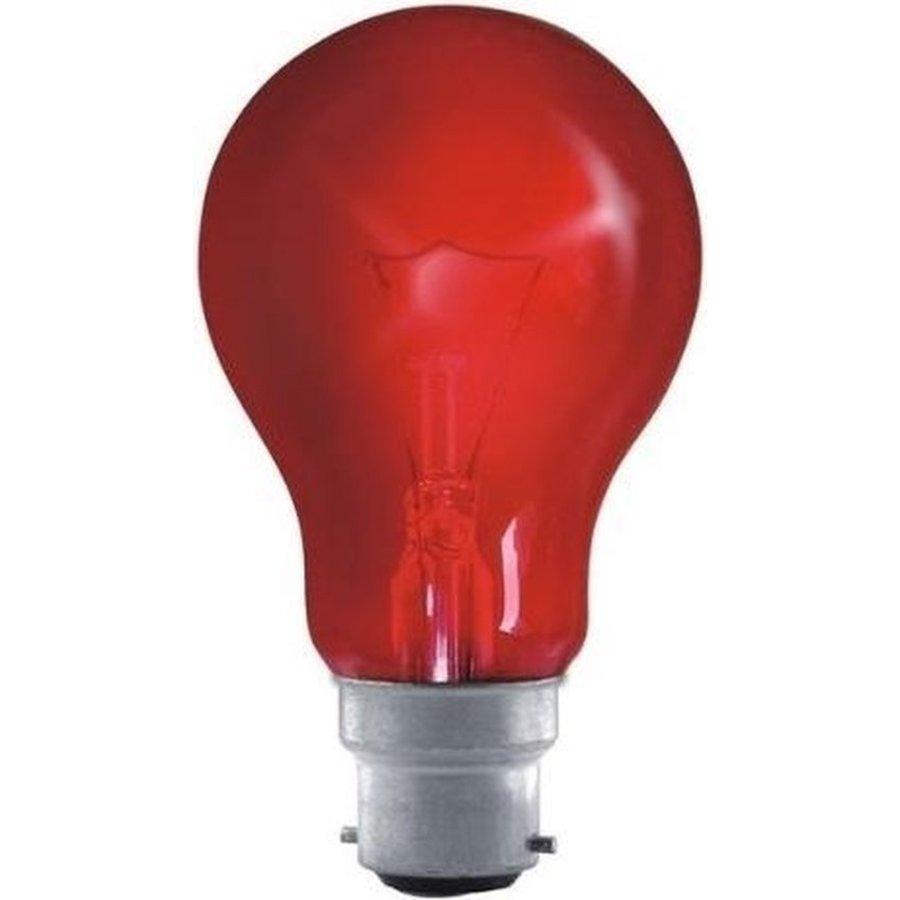 60W B22D Haardvuurlamp 240V-1