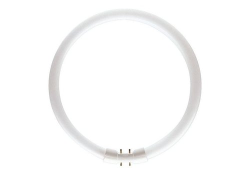Philips MASTER TL5 Circular 22W/840