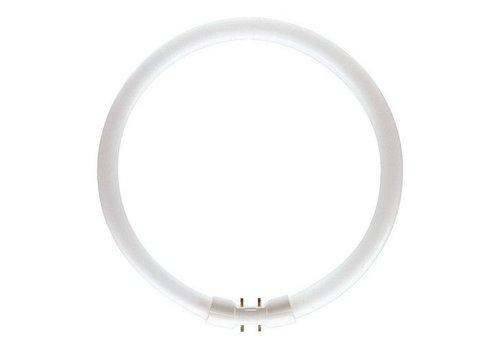 Philips MASTER TL5 Circular 40W/830