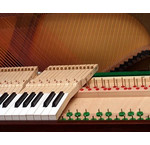 Piano en Vleugel onderhoud