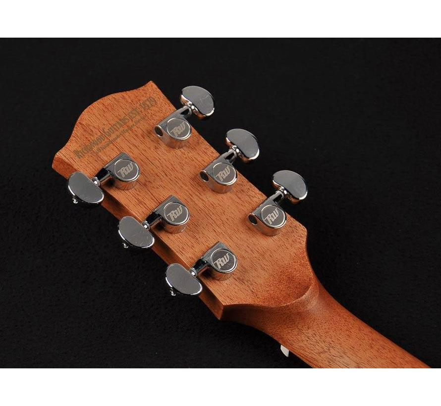 Richwood D-20 | Dreadnought Master Series handgemaakte gitaar
