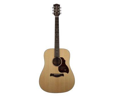 Richwood Richwood D-20 | Dreadnought Master Series handgemaakte gitaar