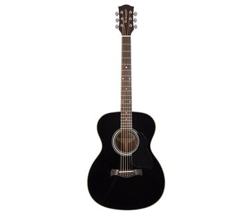 Richwood Richwood A-40-BK Grand Auditorium zwarte gitaar