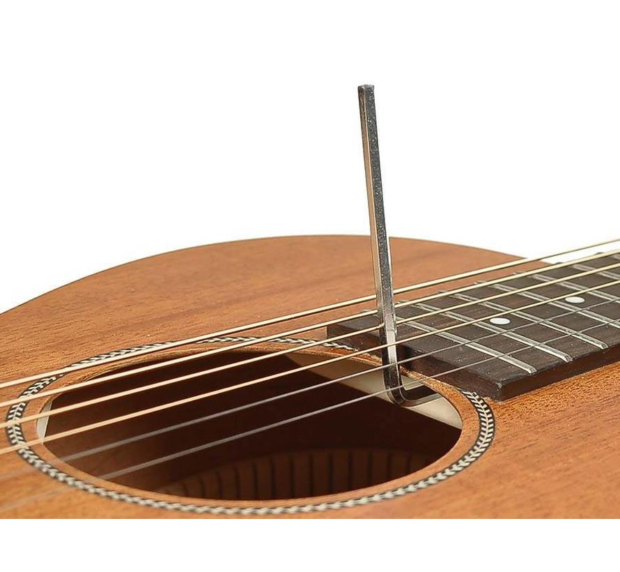 Richwood P-50 Parlor model gitaar