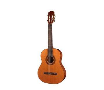 Salvador Cortez Salvador Cortez CC-10-JR Student Series klassieke gitaar