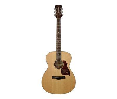 Richwood Richwood A-20-E semi akoestische gitaar