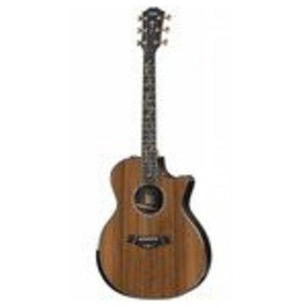 Grand Auditorium gitaar kopen?