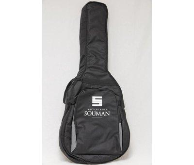 Richwood Richwood SWG-130-CE semi akoestische gitaar