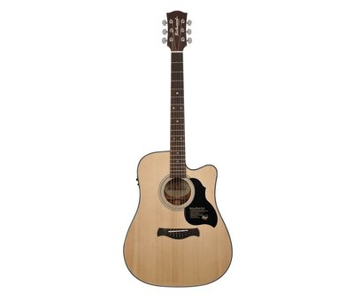 Richwood Richwood D-40-CE semi akoestische western gitaar