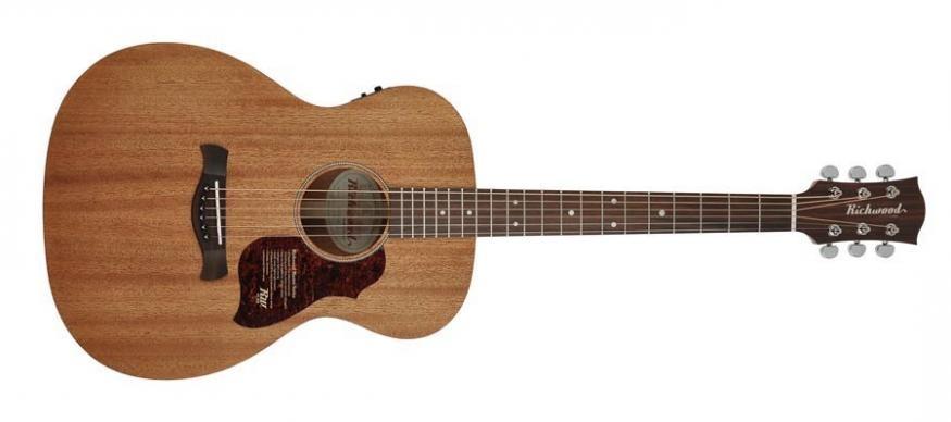 Richwood A50 Master gitaar