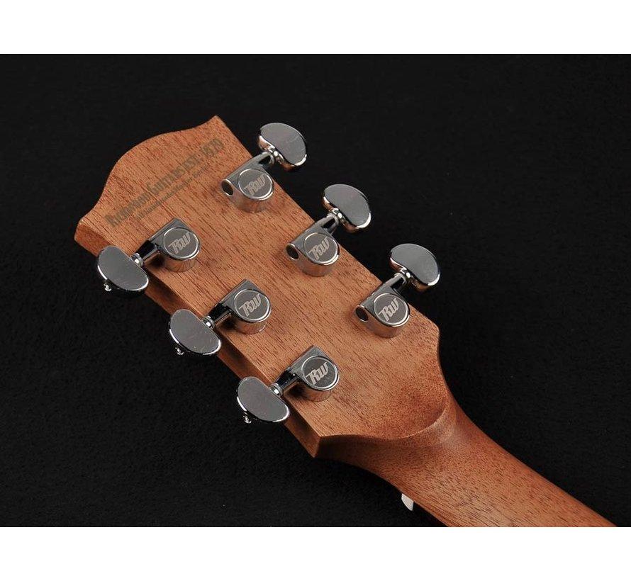 Richwood G-20-CE Semi Akoestische gitaar