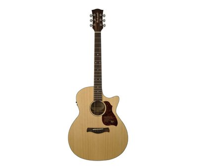 Richwood Richwood G-20-CE Semi Akoestische gitaar