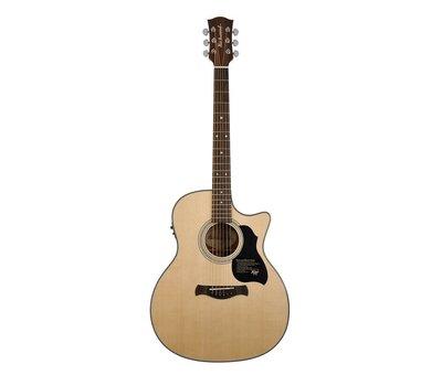 Richwood Richwood G-40-CE Semi Akoestische gitaar