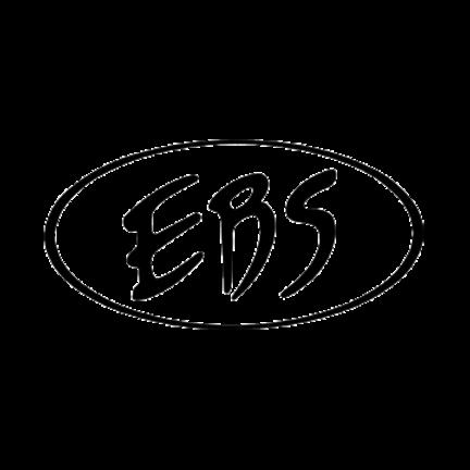 EBS  Combo Basversterker