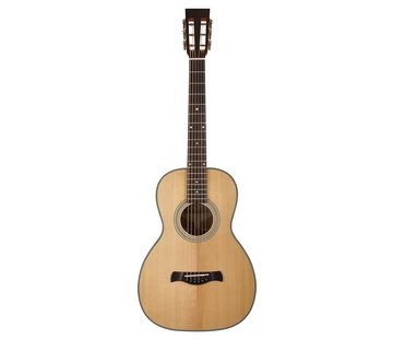 Richwood Richwood P-40 Parlor model akoestische gitaar | Master Series
