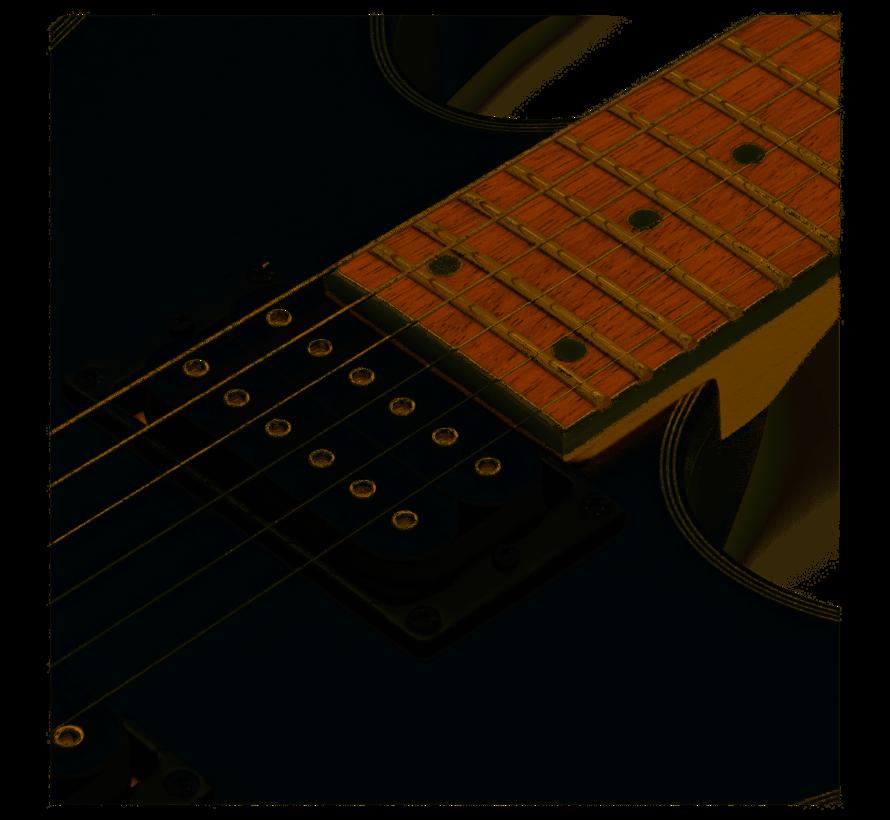 Ibanez RG421EX-BKF Elektrische gitaar
