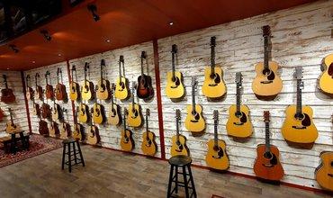 Grote Martin gitaar collectie