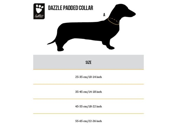 Dazzle Halsband