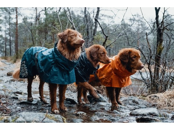 Manteau de pluie de la Monsun