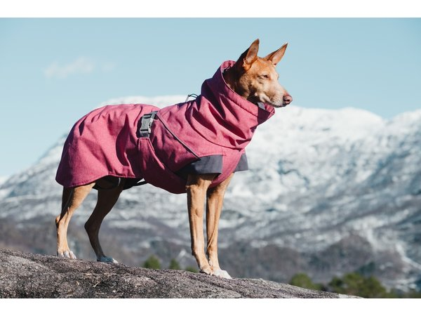 Manteau d'hiver Expédition