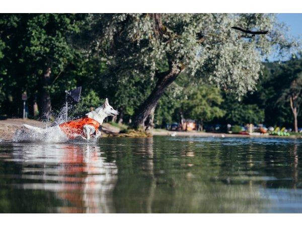 """Die neue Idee: Der """"Neoprenanzug"""" für Wasserratten"""